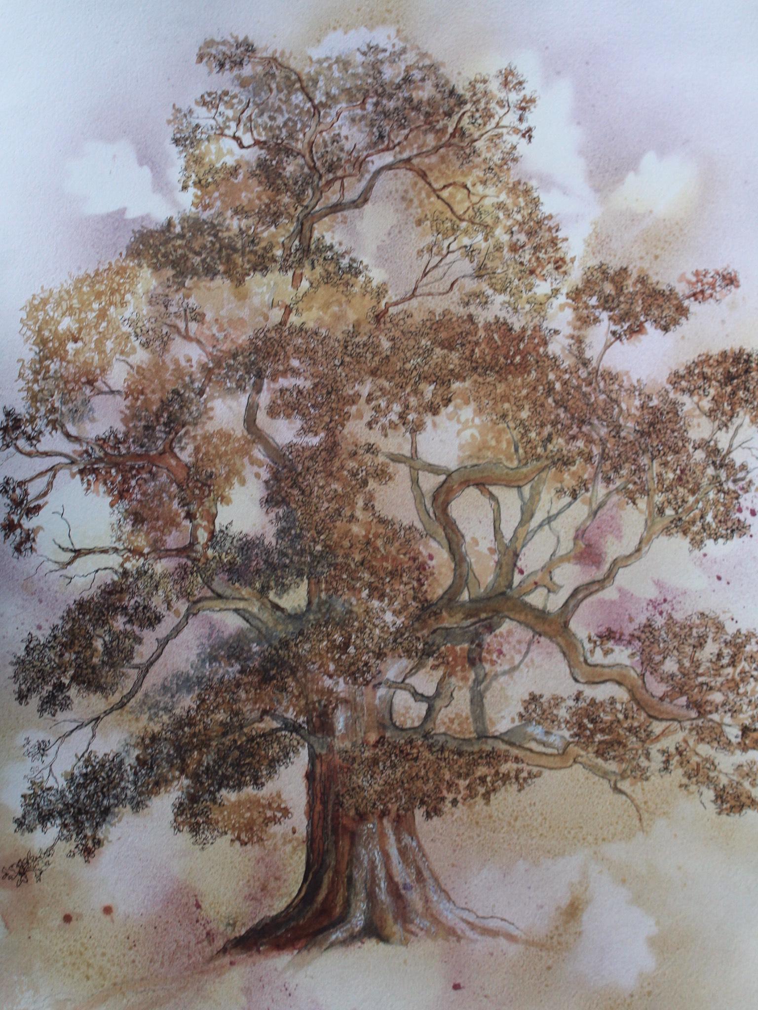 The Glorious Oak