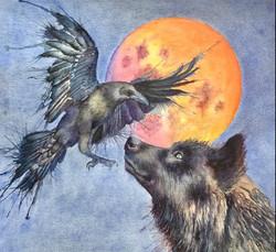 Wolf crow