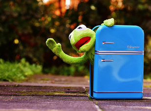 Handling a Refrigerator or Freezer Temperature Excursion