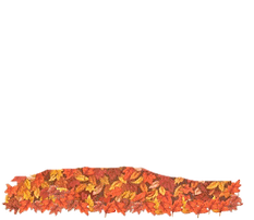 autumn-clipart-animated-5-cutout.png