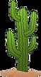 cactus1-cutout.png