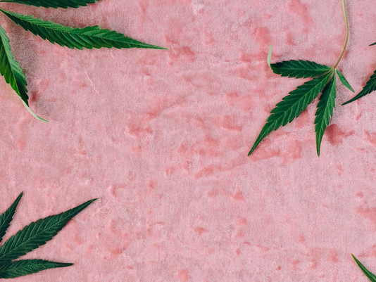 Your Cannabis Branding Guide Book Is Right Here: How to Impress Customers