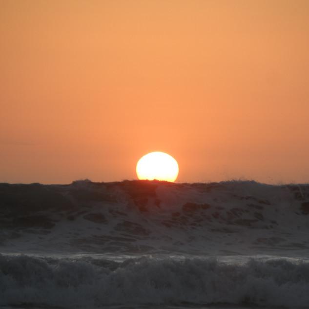 Playa Ostional