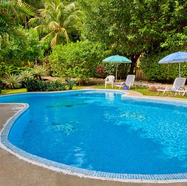 Poolside Entre Dos Aguas