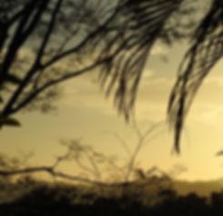 Beautiful and cheap Holidaydestination Costa Rica