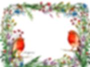 Anúncio coleção flores silvestres 2.png