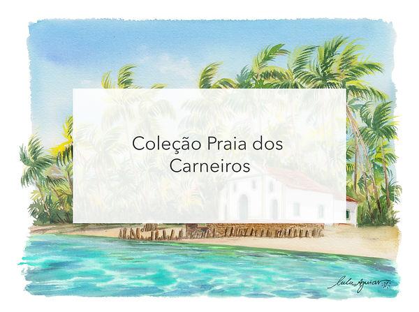 titulo aquarela Praia dos carneiros.jpg