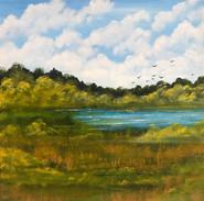 White Pond, NH