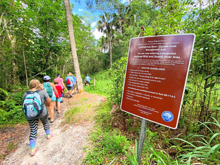 Looking for adventure? Follow the Lake Worth Waterkeeper into South Florida's wild and wet interior