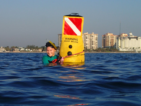 Injured snorkeler and the boater who hit him want lawmakers to replace diver-down flag with buoy
