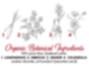 hibiscus & ginger botancials.png