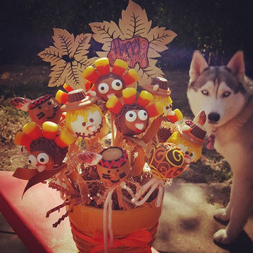 Puppy loves the cake pops too!!!