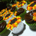 Oreo sunflower and chocolate cupcakes