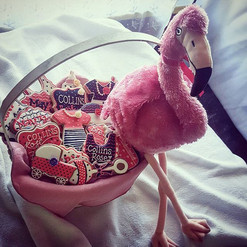Welcome Baby Cookie basket