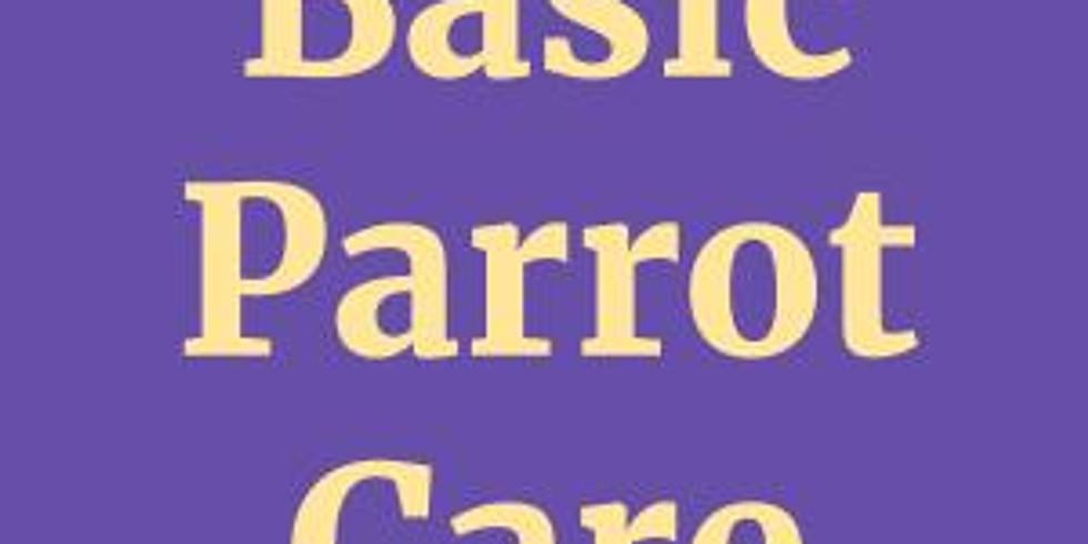 Basic Parrot Class