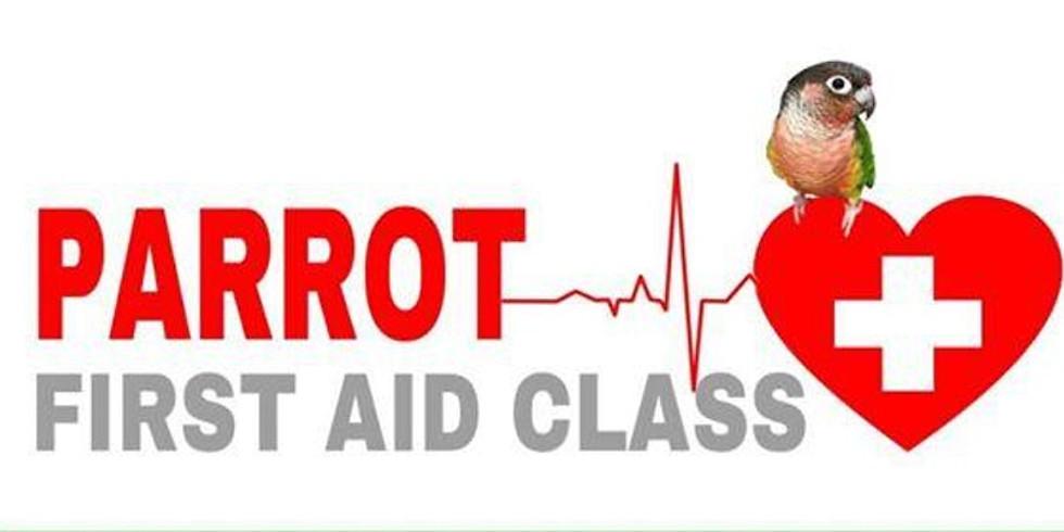 Parrot First Aid Class