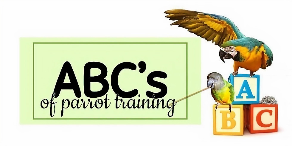 ABC's of Training