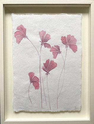 Jess Wheeler, 'Icelandic Poppies' 2021
