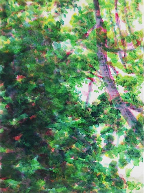 Maddie Yuille, 'Garden Explorations II' 2020