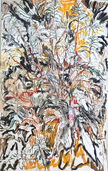 Beatrice Hasell-McCosh, 'Garden Study II' 2020