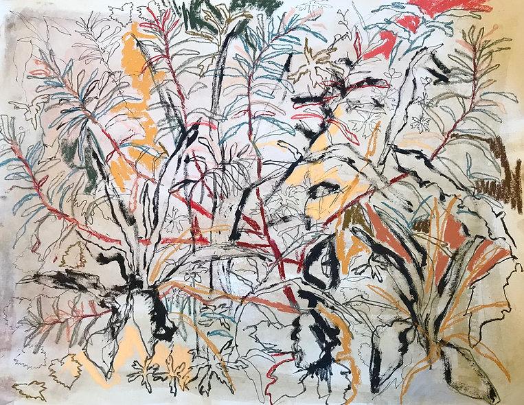 Beatrice Hasell-McCosh, 'Garden Study' 2020
