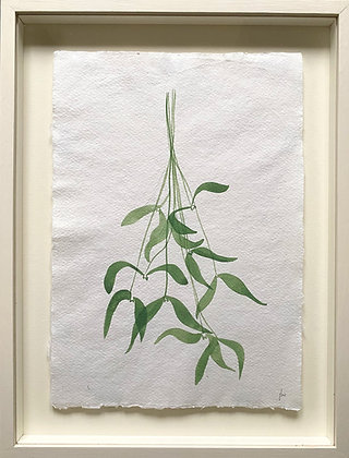 Jess Wheeler, 'Mistletoe' 2021
