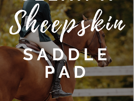 Inside the Hunter/Jumper Tack Room: Cleaning Your Sheepskin Saddle Pad