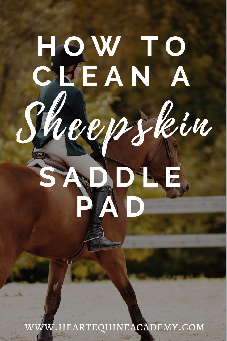 How to clean your horse's sheepskin saddle pad