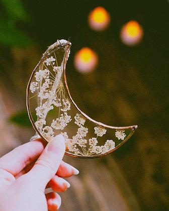 Floral Moon *Queen Anne's Lace*