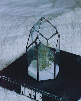 Tourmaline Terrarium