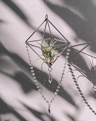 Stardust planter