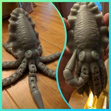 Cuttlefish Doll