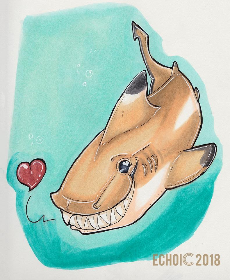 sharkweek1.png