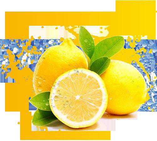 lemon-juice-sampar-drinking-water-19.png