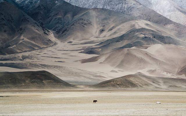 Hanley, Ladakh