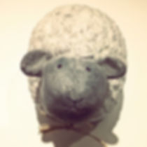 #knit#bologna#wool