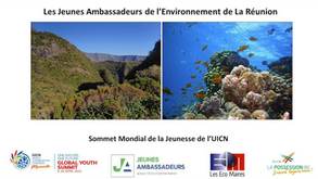 Les jeunes ambassadeurs réunionnais s'engagent en faveur de deux sites naturels à La Possession