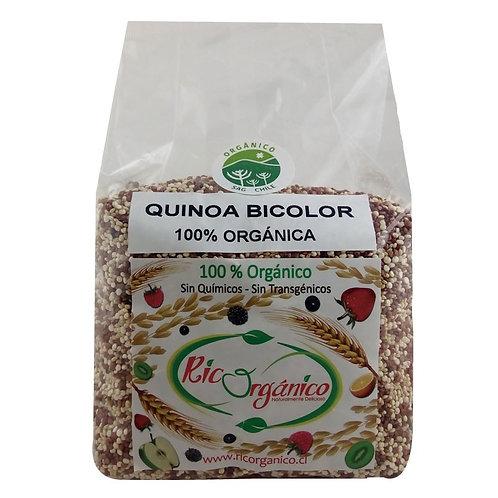 Quinoa bicolor orgánica