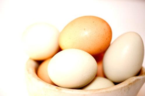 Huevos de gallinas libres (12 unidades)