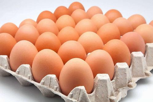 Huevos de gallinas libres (30 unidades)