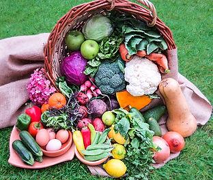 Delivery de frutas y verduras orgánicas. www.santiagonativo.cl