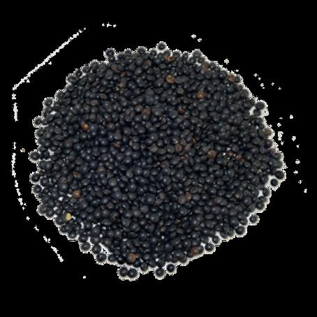 Lenteja Caviar Positiv