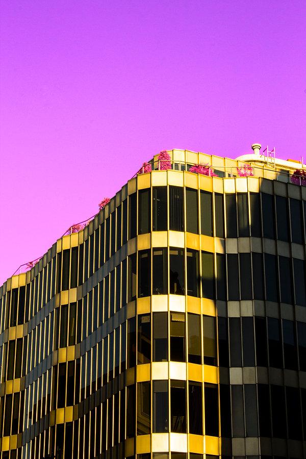 pinkrules2satura.jpg