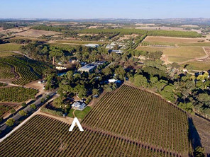 Possibly the best vineyard stay on the Planet