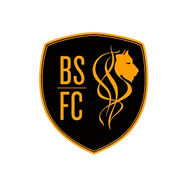 bs_logo-removebg-preview.png