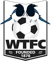 Wimborne_Town_F.C._(logo).png