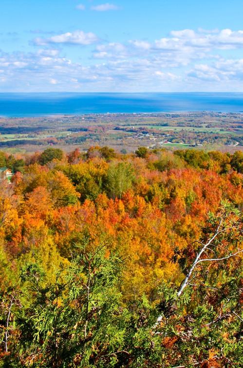 fall trees and water views.jpg