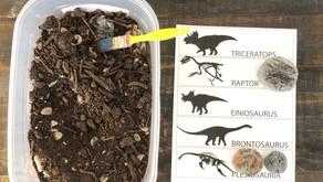 DIY Dinosaur Fossil Dig