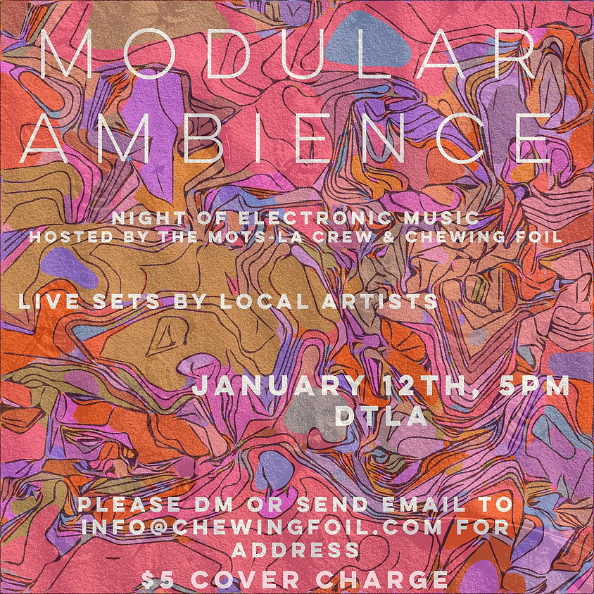 Modular Ambience : A Night of Electronic Music