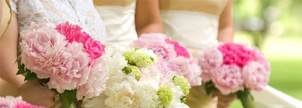 Brides holding a bouquet